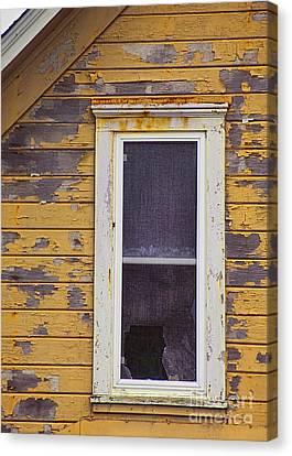 Window In Abandoned House Canvas Print by Jill Battaglia