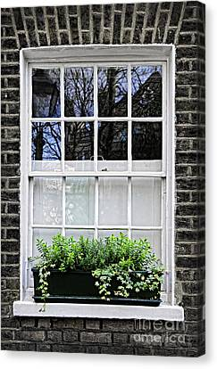 Window In London Canvas Print by Elena Elisseeva