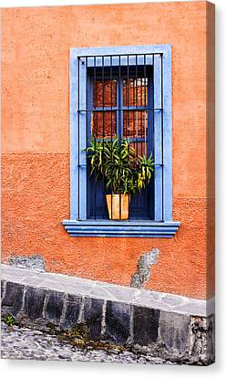 Window In San Miguel De Allende Mexico Canvas Print by Carol Leigh