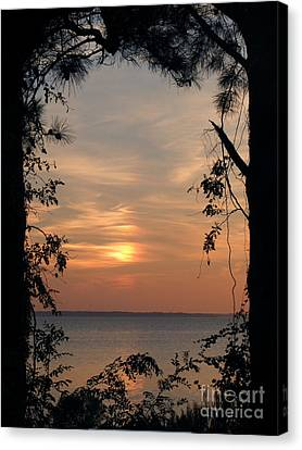 Window To Another World Canvas Print by Ela Sita