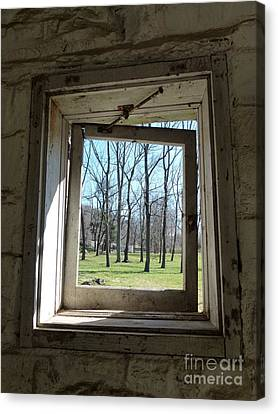 Window To The World Canvas Print by Jane Ford