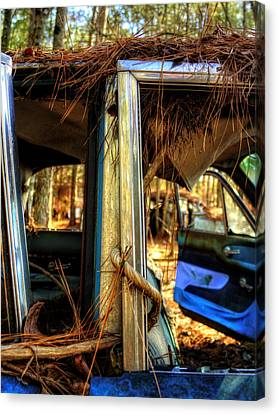 Window Vine Canvas Print by Greg Mimbs