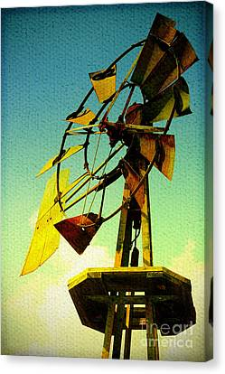 Winds Of Change Canvas Print by Trish Mistric
