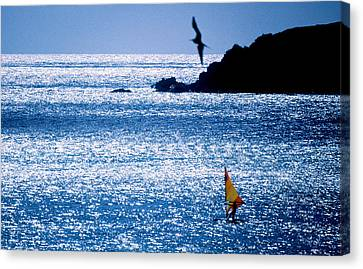 Windsurfer In The Sea, Sint Maarten Canvas Print by Panoramic Images