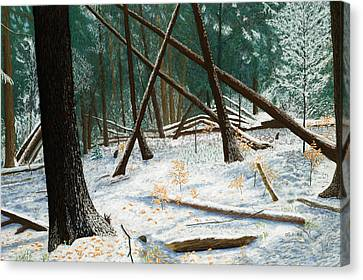 Windswept Woods Canvas Print