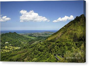 Windward Oahu Canvas Print by Charmian Vistaunet