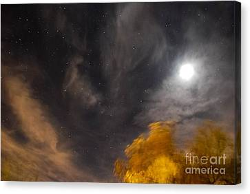 Windy Night Canvas Print