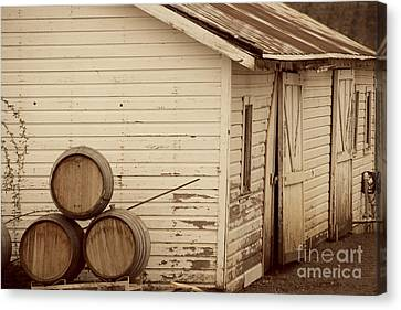 Wine Barrels And Rustic White Barn Canvas Print