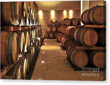 Aging Canvas Print - Wine Barrels by Elena Elisseeva