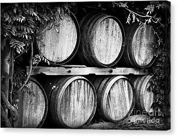 Wine Barrels Canvas Print by Scott Pellegrin