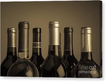 Wine Bottles Canvas Print by Diane Diederich