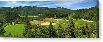 Vine Grapes Canvas Print - Wine Country Panorama by James Eddy