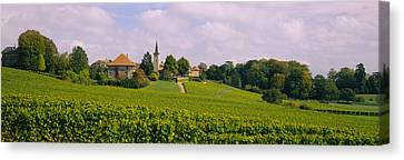 Wine Scene Canvas Print - Wine Country With Buildings by Panoramic Images