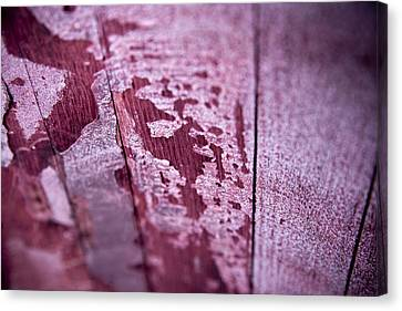 Wine Red Canvas Print