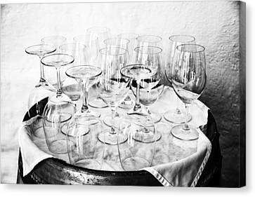 Wine Tasting Glasses In Black And White Canvas Print by Georgia Fowler