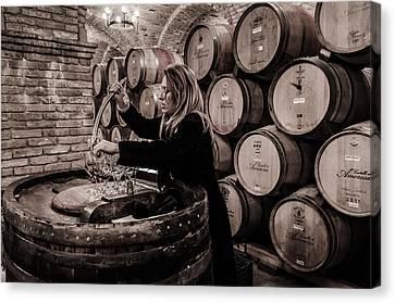 Wine Tasting Canvas Print by Linda Villers