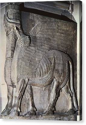 Winged Assyrian Bull. 721 Bc - 705 Bc Canvas Print by Everett