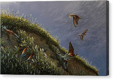 Wings Of Sumer Canvas Print