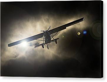 Canvas Print featuring the photograph Wings by Paul Job