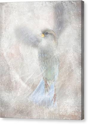 Wings Up Canvas Print by Jim Wright