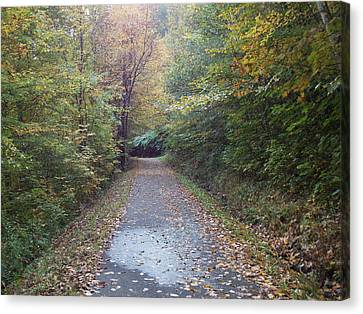 Winnipesaukee Trail Canvas Print by Catherine Gagne