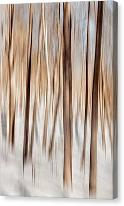 Winter Abstract Canvas Print by Bill Wakeley