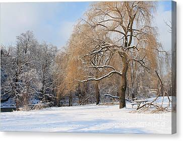 Winter Along The River Canvas Print by Nina Silver