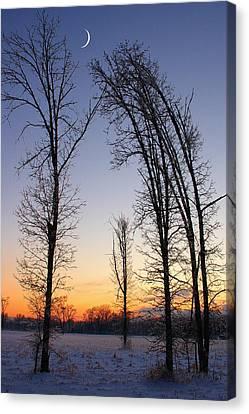 Winter At Dusk Canvas Print