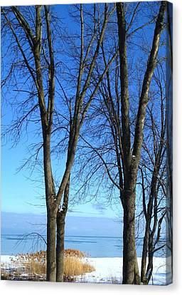 Winter At Lake Huron Canvas Print by Rhonda Humphreys