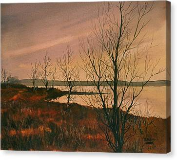 Winter At Lake Wilson Canvas Print