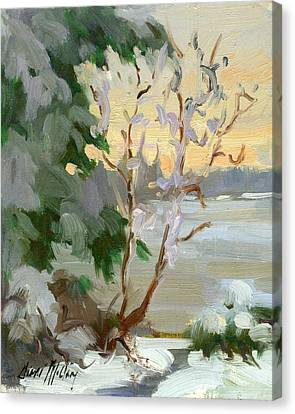 Snow Scene Canvas Print - Winter At Martha Lake by Diane McClary