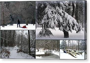 Winter At Petrifying Springs Park Canvas Print