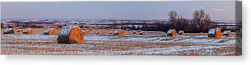 Haybale Canvas Print - Winter Bales by Scott Bean