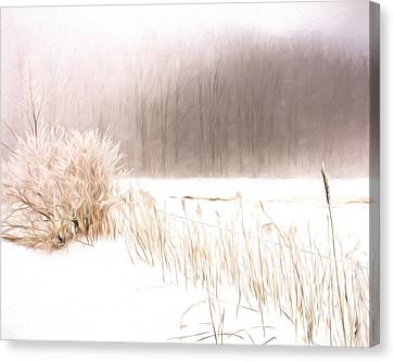 Misty Canvas Print - Winter Barbed Wire Fence - Artistic by Chris Bordeleau