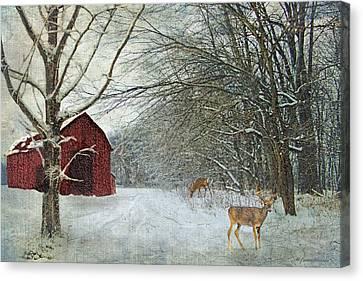 Rustic Canvas Print - Winter Barn by Lianne Schneider