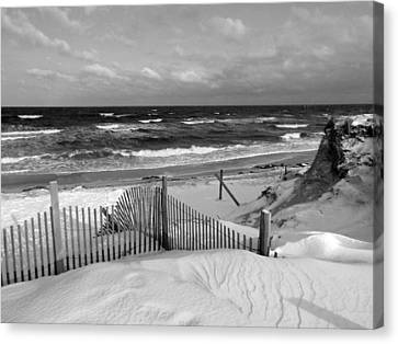 Winter Beach Canvas Print by Dianne Cowen