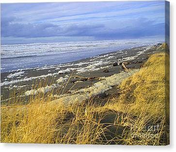 Winter Beach Canvas Print by Jeanette French