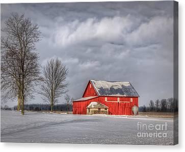 Winter Beauty Canvas Print by Pamela Baker