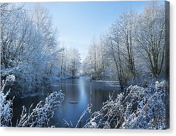 Winter Beauty Canvas Print by Svetlana Sewell
