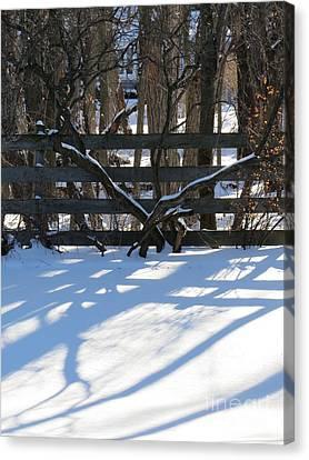 Winter Below Zero 1 Canvas Print by Judy Via-Wolff