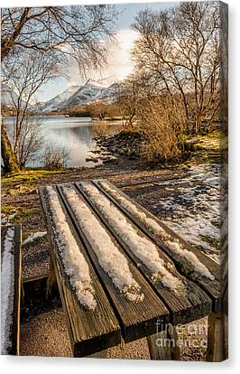 Winter Bench  Canvas Print by Adrian Evans