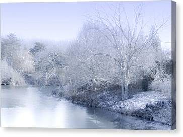 Winter Blue And White Canvas Print by Julie Palencia