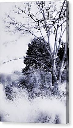 Winter Blue  Canvas Print by Julie Palencia