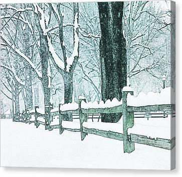 Winter Blues Canvas Print by John Stephens