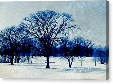 Winter Blues Canvas Print by Shawna Rowe