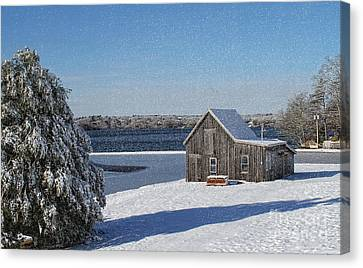 Canvas Print featuring the photograph Winter Bog by Gina Cormier