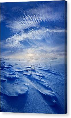 Winter Born Canvas Print by Phil Koch