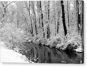 Winter By Crum Creek Canvas Print