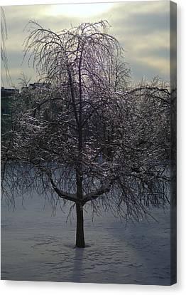 Winter Candelabrum Canvas Print