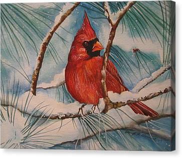 Winter Cardinal Canvas Print by Cheryl Borchert
